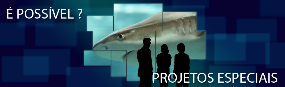 Video Wall Tubarão